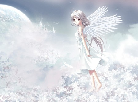 The World Beyond - cute, wings, angel, flowers, girls, clouds, kingdom, feathers