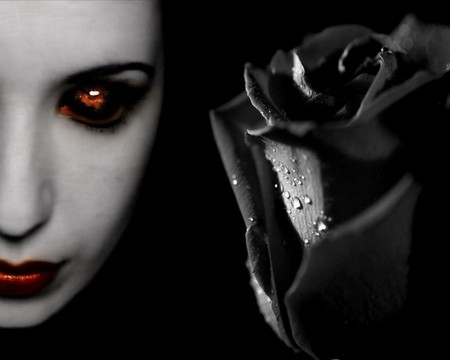 Dark Rose Fantasy Abstract Background Wallpapers On
