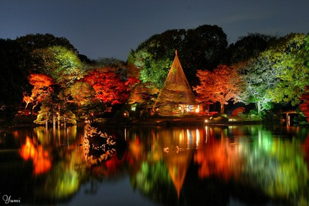 Fantastic Wallpaper Night Japanese Garden - 451055-bigthumbnail  Pic-49361.jpg