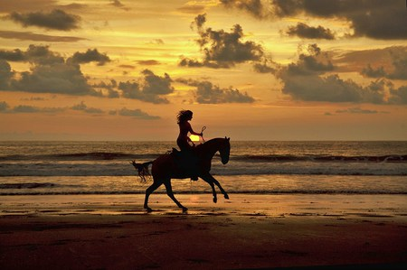 Evening ride - Horses & Animals Background Wallpapers on ... Horseback Riding On The Beach Photography