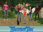 Maximum Ride - The Flock