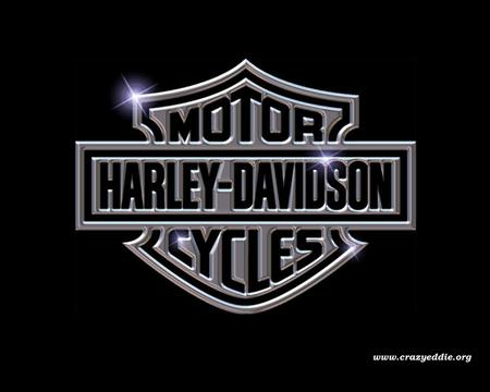Harley Shield - logo, shield, harley