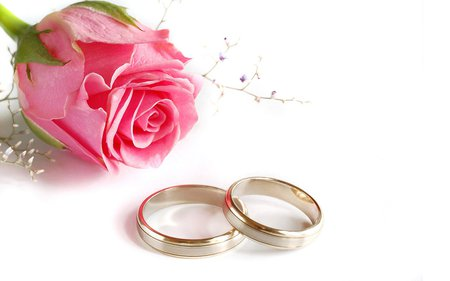 Wedding rings flowers nature background wallpapers on desktop wedding rings rose wedding ring flower junglespirit Image collections