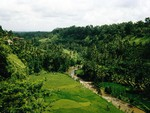 Bali-View-from-a-Restaurant-near-Ubud-on-tropical