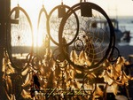 Dream Catchers in Morning Light