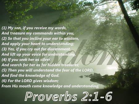 Wisdom - bible verse, god, wisdom, scripture