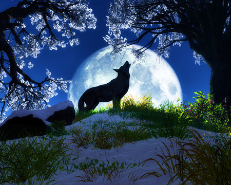 Cry Wolf - howl, hill, wolf, moon, cry