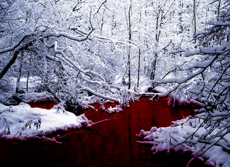 Blood River - snow, winter, creek, rivers, river, blood, landscape, 3d and cg, abstract, other, goth, trees