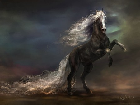 Nocturnal Stallion - stallion, fantasy, horse, abstract, fantasy horse