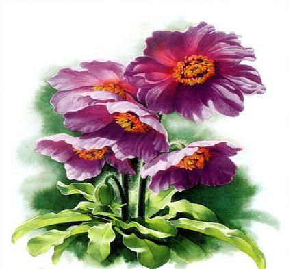 Pretty & Sweet - leaves, purple, painting, flower, stem