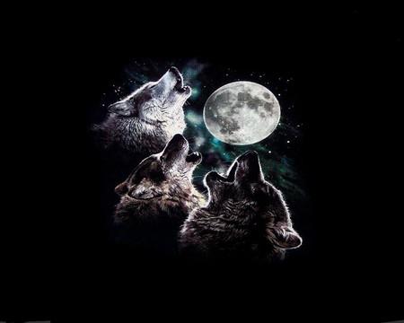 3 WOLF MOON - moon, three, wolf, howling