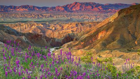 Mountain - flowers, mountain, nature, sky