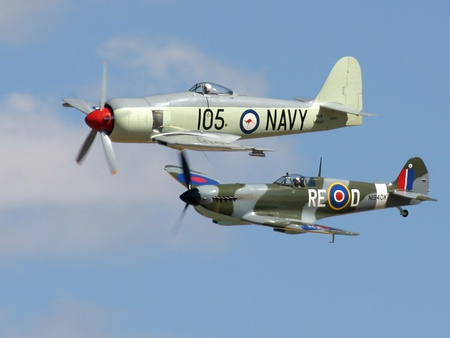Seafury and Spitfire - seafury, raf, ww2, fighter, spitfire