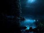 SWANS MOON LIGHT