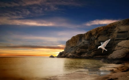 Simply Beautiful - colorful, birds, ocean, peaceful, freedom, free, bird, sea, rocks, sunset, sky, colors, nature, seagull, beauty, beautiful, lovely, clouds, beach