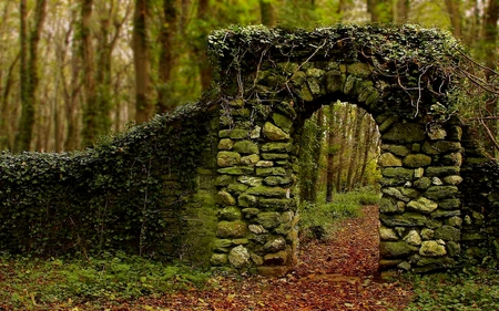 THE ARCHWAY - path, archway, forest, creeps, pathway, stones, leaves, green, arch, trees