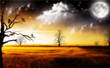 Birds Dusk - planets, image, grass, background, band, herd, bevy, nice, group, gold, multicolor, wallpaper, bright, paisage, art, cohort, brightness, digital, white, ambar, amber, painting, scenery, animals, horizon, maroon, paisagem, nature, troop, desktop, branches, scene, orange, yellow, ducks, clouds, cenario, fantasy, lightness, scenario, filds, moons, widescreen, paysage, cena, golden, black, birds, trees, sky, panorama, ravens, cool, photoshop, landscape, colorful, brown, gray, trunks, picture, ovey, grasslands, light, flock, stars, multi-coloured, satellites, brood, colors, crater, universe, plants, colours, natural