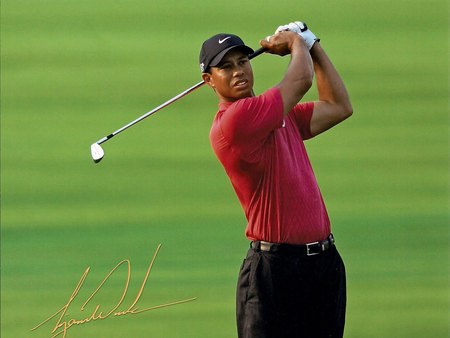 Tiger Wood - dress, the best, expert, golf player, green, male