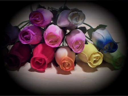 Love in many colors - blue, fuschia, colors, pink, roses, coral, red, yellow, leaves