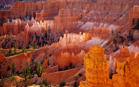 Rock Formation ... Wow - orange, pink, rock, formations, green, trees, coloured