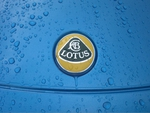 Raindrops on Lotus badge