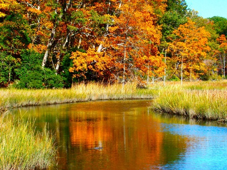 Fall on the Country Road - autumn, beauty, color, water, fall, trees