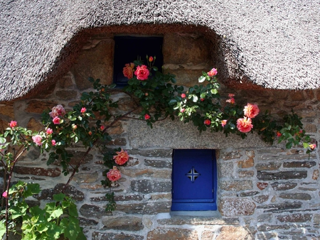 heavenly  cottage - flowers, stone, thatched, heavenly, cottage, wall