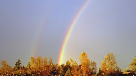 Evenings Double Rainbow - autumn, color, firefox persona, widescreen, washington, trees, fall, sun, rainbow, dusk, leaves
