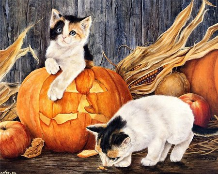 Are You Sure It's Pumpkin - corn, pumpkins, kittens, hay, stalk, painting