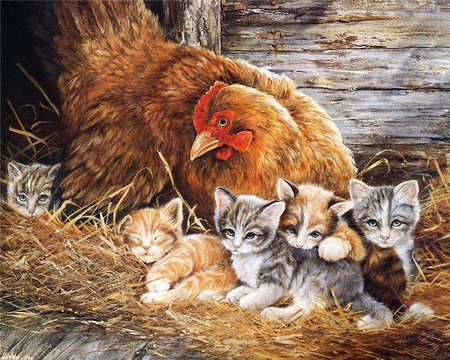 Our Adopted Mom - chicken, comfort, painting, kittens, hay, loving, barn