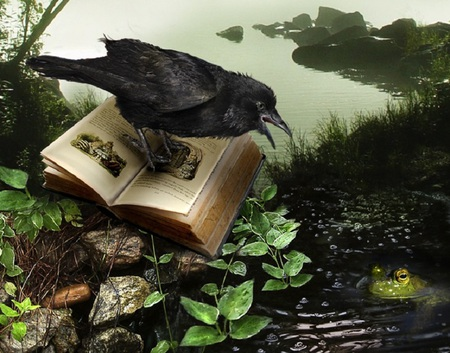 Fairy Tale - fantasy, stones, water, frog, crow, artwork, book, leaves
