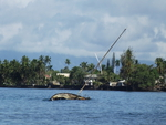 Shipwreck at Lahaina