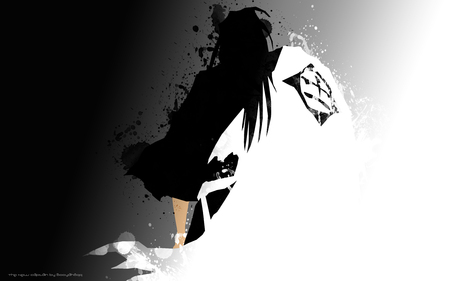 The New Captain - bleach, death, shinigami, ichigo, hollow, soul, god, captain