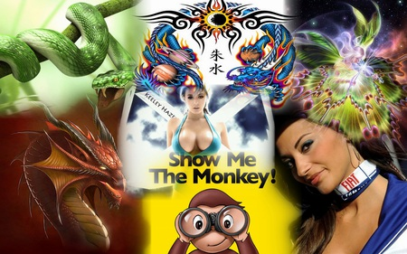 show me the monkey