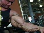 Lee Priest Forearm