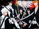 bleach the fellow ship of the sword