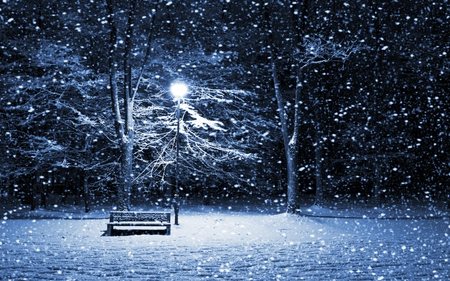 Beautiful Winter - lantern, beautiful, picture, empty, beauty, evening, light, blue, night, amazing, lamp, lovely, romantic, romance, bench, winter time, park, trees, winter, tree, snow, snowflakes, peaceful, sorrow, nature, walk, white, landscape