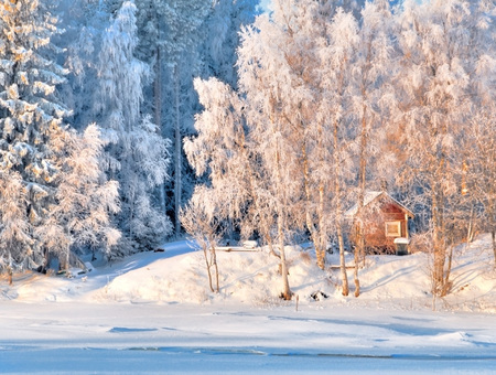 January colors - places, white, colors, sesons, nature, beauty, houses, frozen, forest, snow, winter, popular
