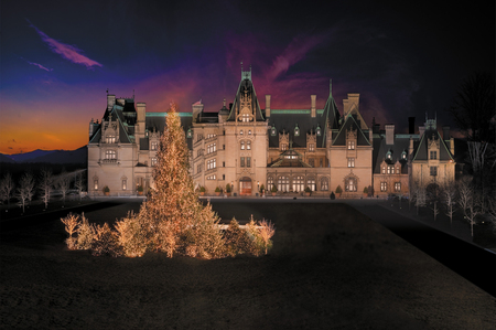 Christmas At Biltmore - house, ashville, christmas, holiday, home, sky, clouds, lights, tree, nc, manstion