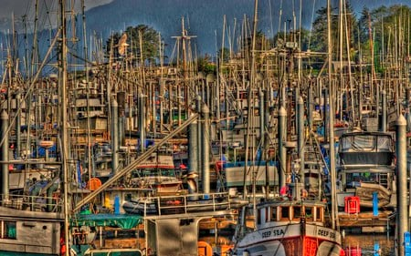 The Harbor - sitka, alaska, boat, dlbdata, ship, masts, hdr, fishing boat, harbor