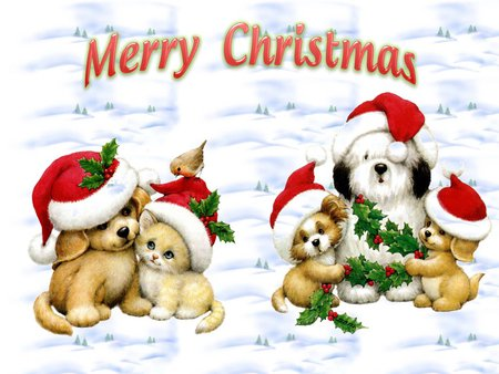 Sweet Christmas pets - Dogs & Animals Background Wallpapers on ...