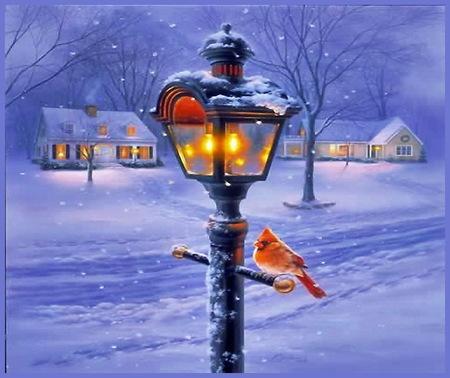 christmas street street light snow lit windows homes trees street
