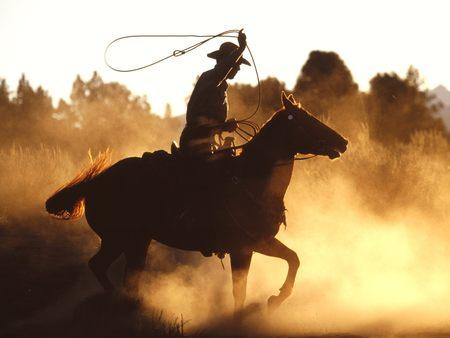 cowboy - cowboy, horses, nature, western