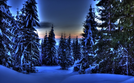 Romanian Winter - romania, beautiful, sunset, clouds, splendor, carpathians, beauty, evening, blue, night, amazing, forest, lovely, colors, apuseni, sky, trees, winter, transylvania, snow, mountains, ice, peaceful, nature, white, frozen, landscape