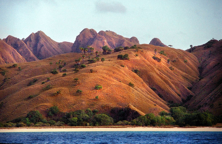 Komodo Island - mountain, beach, komodo, nature, trees, rivers