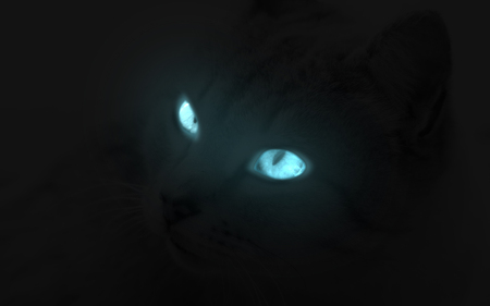 Glowing Cat Eye 3d And Cg Abstract Background Wallpapers
