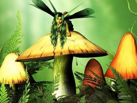 Fairy Mushrooms - fantasy, fairy, other, green, mushrooms