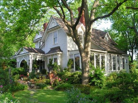 Beautiful House Flowers Garden