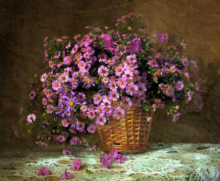 Dressed In Pink - doily, romantic, lacey, impatients, wicker, girlie, spring, asters, still life, bouquet, basket, cuts, blossoms, flowers, pink