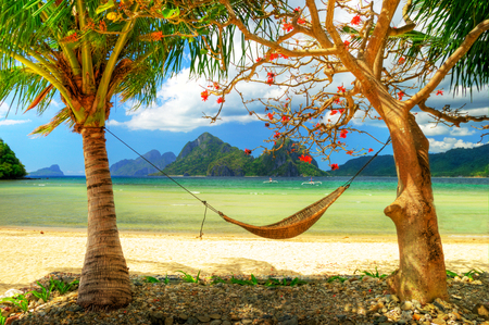 beach - leaf, beauty, cool, flowers, picture, boats, boulders, pillow, fullscreen, sand, trunks, calm, exotic, grass, quiet, relaxation, roots, leisure, cocopalm, respite, sandy, plants, lounge, refreshment, beaches, stones, coco, desktop, photo, islands, net, cholines, rocks, water, sea, break, nice, paisa, coconut, leaves, sky, grasslands, clear, pleasant, paisagem, bed, tranquility, beautiful, repose, trees, nature, sleep, bay, canoe, coconut-tree, palms, beach, paradise, mounts, vacation, stand, panorama, background, hq, relax, natural, branches, rest, landscape, mains, hills, serene, pc, clouds, image, ocean, photography, wallpaper, mountains, palm, hdr, hammock